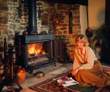 Stovax-Regency multi fuel stove